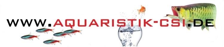 Aquaristik CSI Zierfische vom Profi