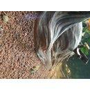 PRO H2O Bioakt. Aquarien-Bodengrund 1-4mm 5L