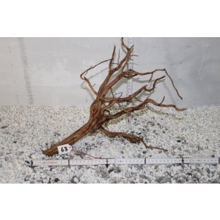 Aquariumwurzel Fingerwurzel Red Wood L